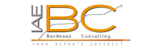 IAE Bordeaux Consulting
